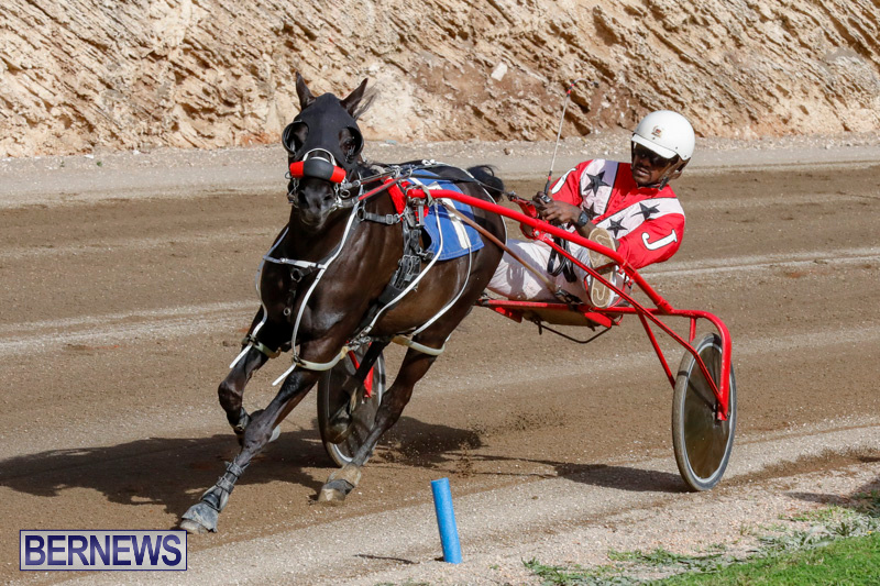 Harness-Pony-Racing-Bermuda-December-26-2017-8481