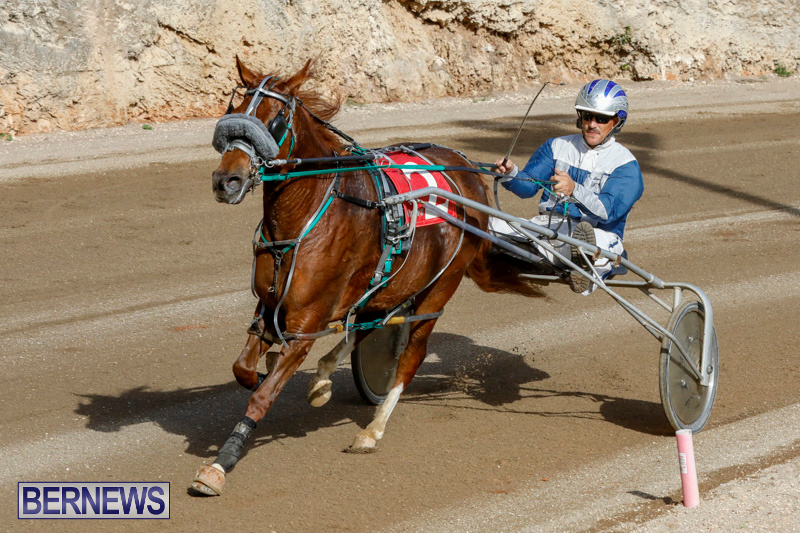 Harness-Pony-Racing-Bermuda-December-26-2017-8489