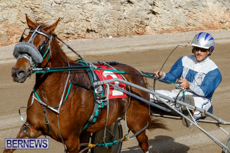 Harness-Pony-Racing-Bermuda-December-26-2017-8491