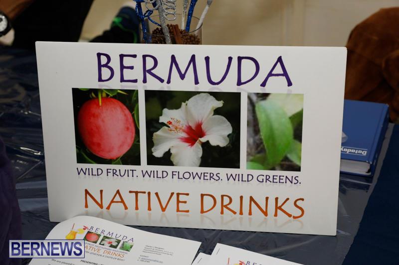 Home-Grown-Alternatives-Show-Bermuda-December-2-2017_2982