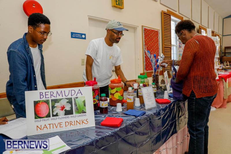 Home-Grown-Alternatives-Show-Bermuda-December-2-2017_2983