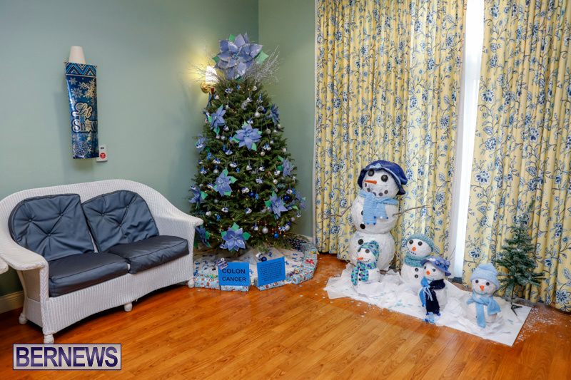 Sylvia-Richardson-Care-Facility-Christmas-Decorations-Bermuda-December-20-2017-6506