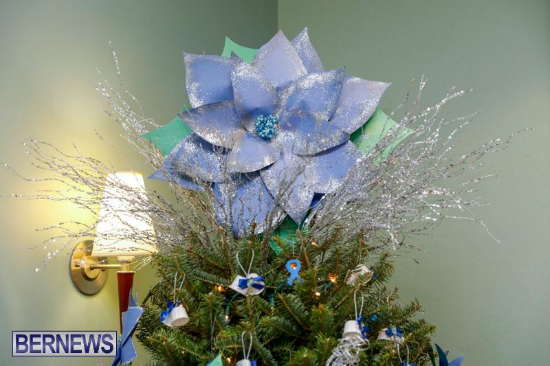 Sylvia-Richardson-Care-Facility-Christmas-Decorations-Bermuda-December-20-2017-6510