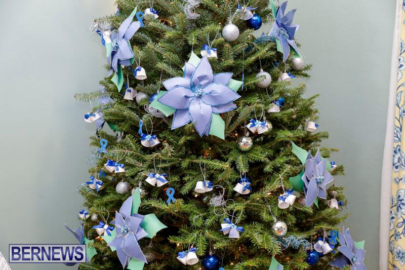 Sylvia-Richardson-Care-Facility-Christmas-Decorations-Bermuda-December-20-2017-6511