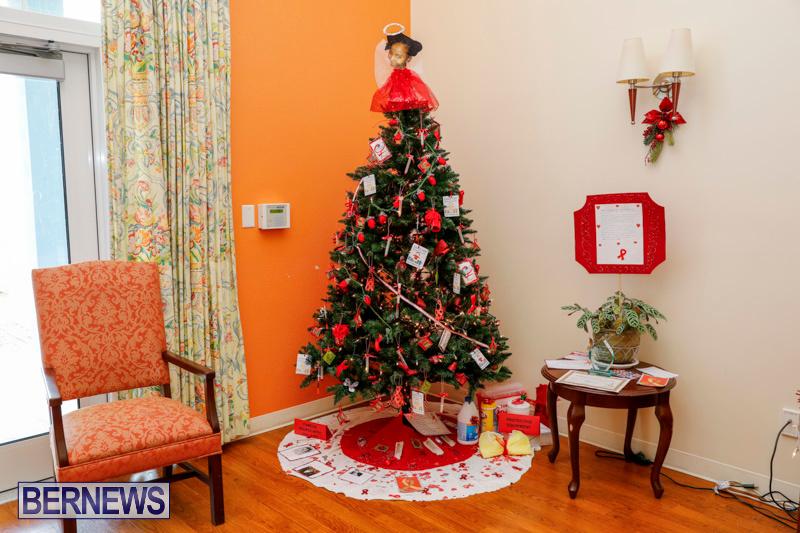 Sylvia-Richardson-Care-Facility-Christmas-Decorations-Bermuda-December-20-2017-6555