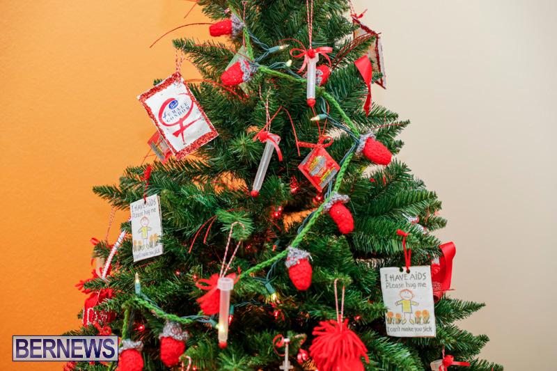 Sylvia-Richardson-Care-Facility-Christmas-Decorations-Bermuda-December-20-2017-6559