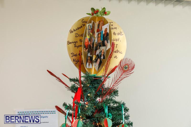 Sylvia-Richardson-Care-Facility-Christmas-Decorations-Bermuda-December-20-2017-6592