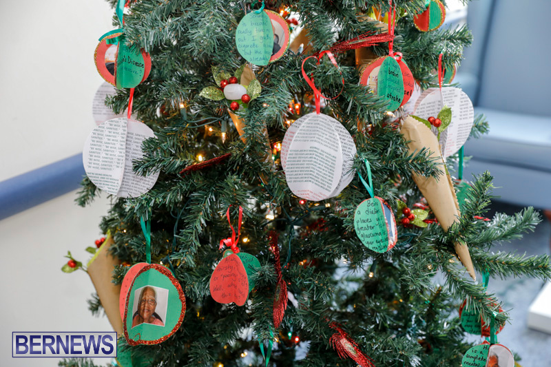 Sylvia-Richardson-Care-Facility-Christmas-Decorations-Bermuda-December-20-2017-6596