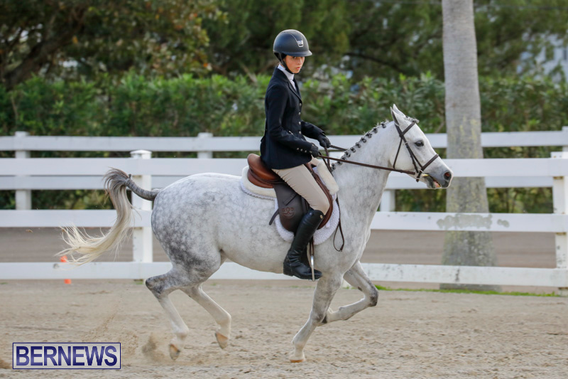 Auto-Solutions-RES-Spring-Show-Bermuda-January-20-2018-2442