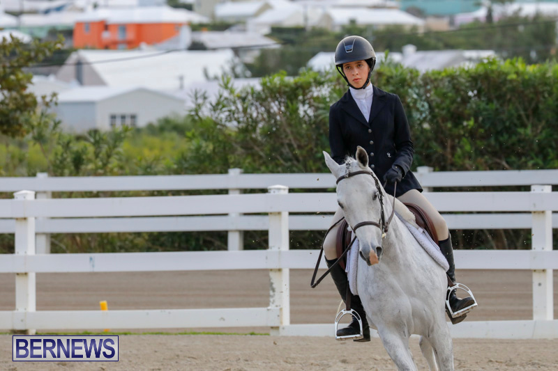 Auto-Solutions-RES-Spring-Show-Bermuda-January-20-2018-2445
