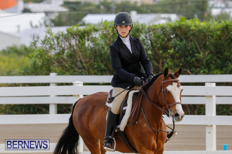 Auto-Solutions-RES-Spring-Show-Bermuda-January-20-2018-2466