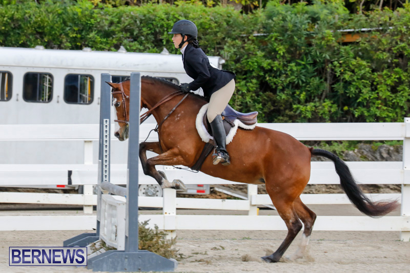 Auto-Solutions-RES-Spring-Show-Bermuda-January-20-2018-2476
