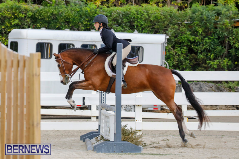 Auto-Solutions-RES-Spring-Show-Bermuda-January-20-2018-2477
