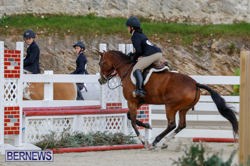Auto-Solutions-RES-Spring-Show-Bermuda-January-20-2018-2480