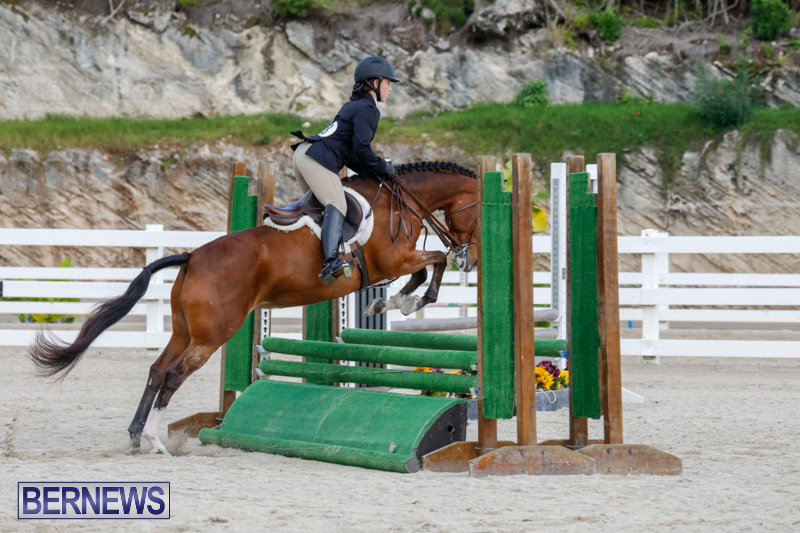 Auto-Solutions-RES-Spring-Show-Bermuda-January-20-2018-2491
