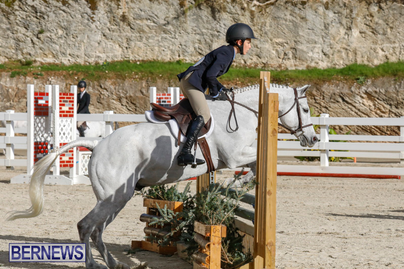 Auto-Solutions-RES-Spring-Show-Bermuda-January-20-2018-2525