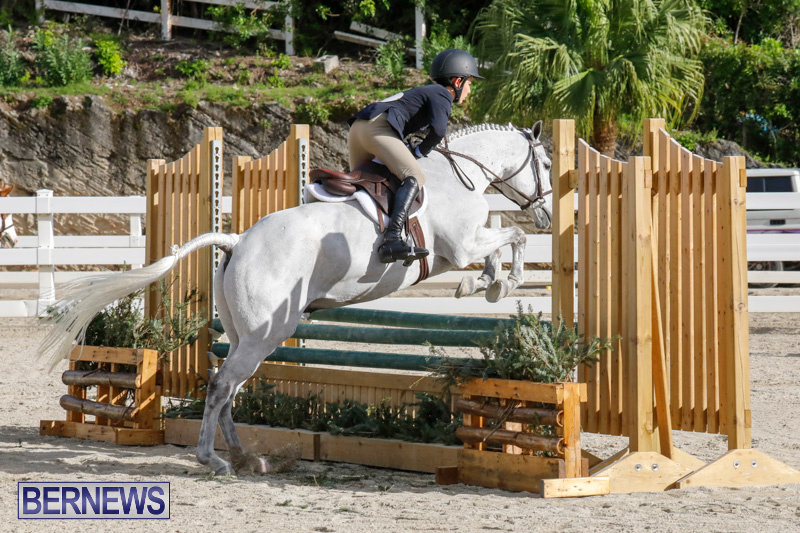 Auto-Solutions-RES-Spring-Show-Bermuda-January-20-2018-2527