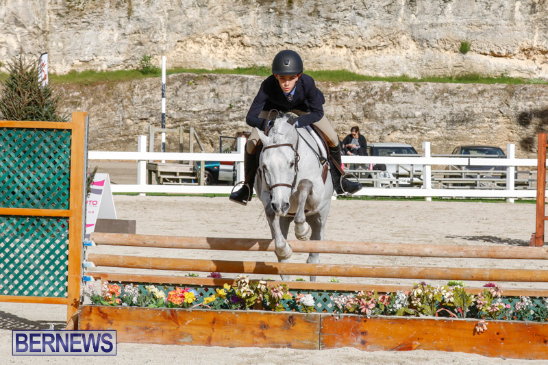 Auto-Solutions-RES-Spring-Show-Bermuda-January-20-2018-2544