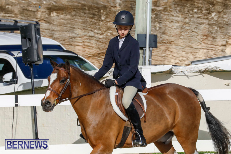 Auto-Solutions-RES-Spring-Show-Bermuda-January-20-2018-2557