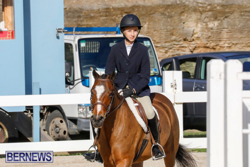 Auto-Solutions-RES-Spring-Show-Bermuda-January-20-2018-2558