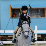 Auto Solutions RES Spring Show Bermuda, January 20 2018-2578