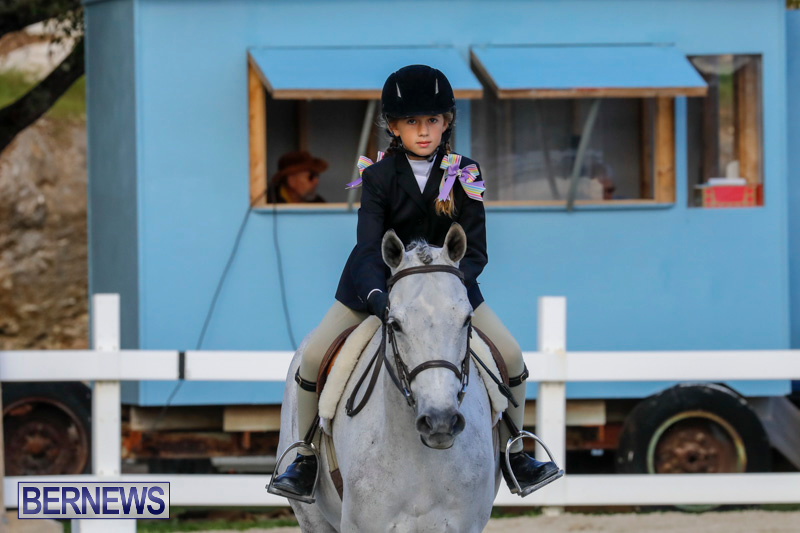 Auto-Solutions-RES-Spring-Show-Bermuda-January-20-2018-2578
