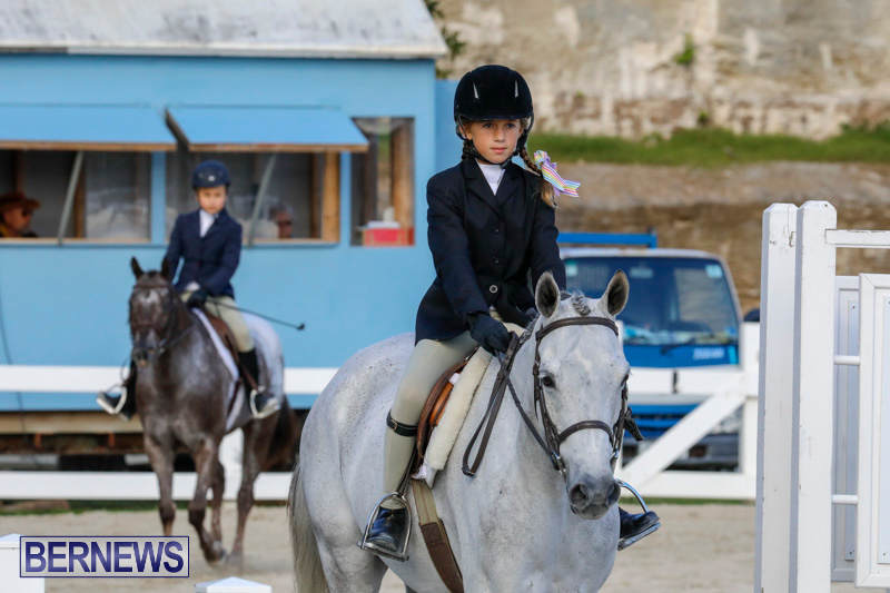 Auto-Solutions-RES-Spring-Show-Bermuda-January-20-2018-2582