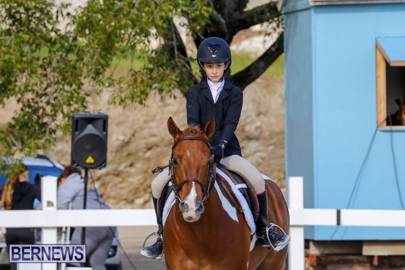 Auto-Solutions-RES-Spring-Show-Bermuda-January-20-2018-2603
