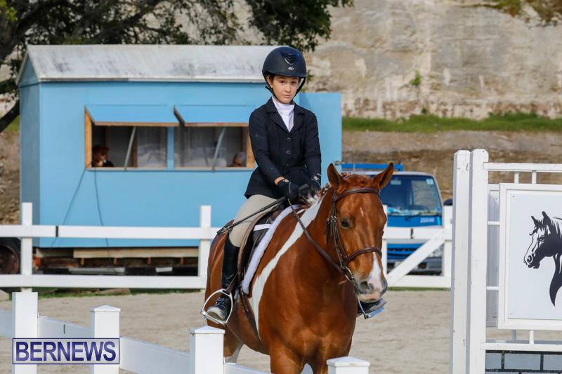 Auto-Solutions-RES-Spring-Show-Bermuda-January-20-2018-2604