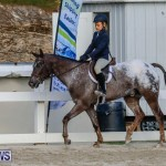 Auto Solutions RES Spring Show Bermuda, January 20 2018-2654