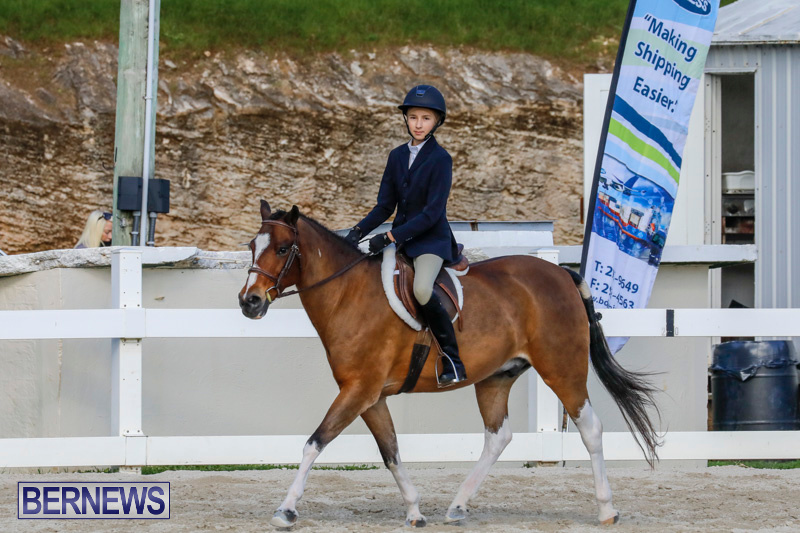Auto-Solutions-RES-Spring-Show-Bermuda-January-20-2018-2665
