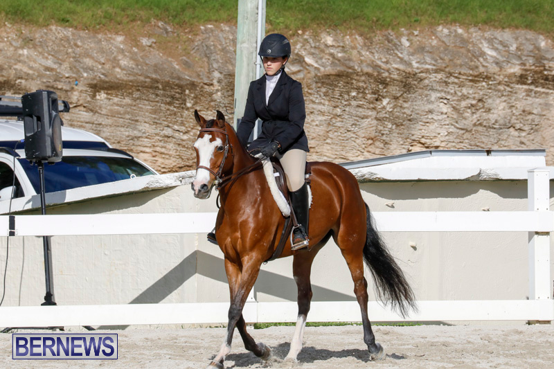 Auto-Solutions-RES-Spring-Show-Bermuda-January-20-2018-2684