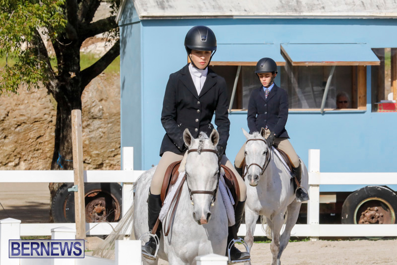 Auto-Solutions-RES-Spring-Show-Bermuda-January-20-2018-2707