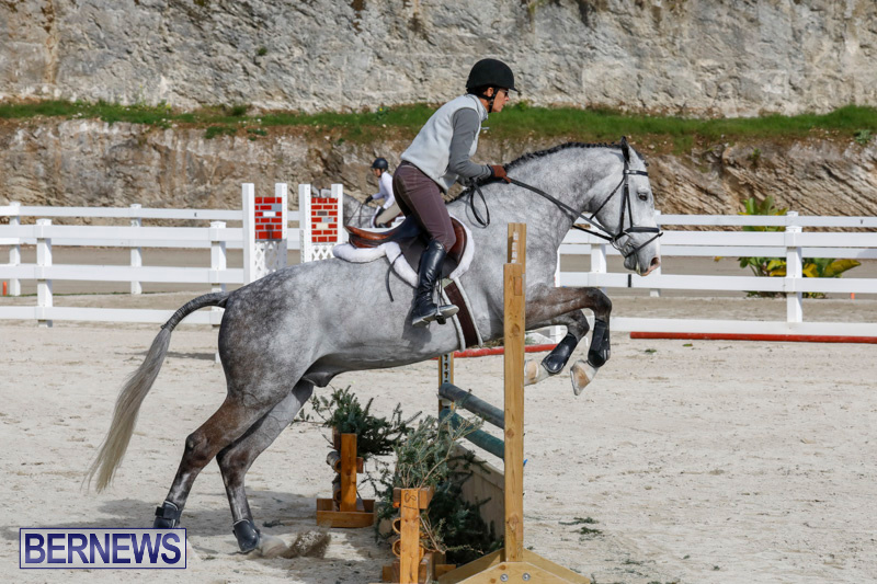 Auto-Solutions-RES-Spring-Show-Bermuda-January-20-2018-2745