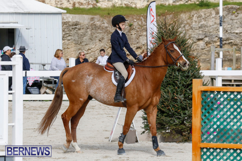 Auto-Solutions-RES-Spring-Show-Bermuda-January-20-2018-2757