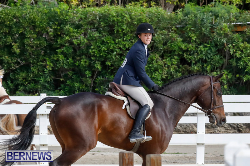 Auto-Solutions-RES-Spring-Show-Bermuda-January-20-2018-2765
