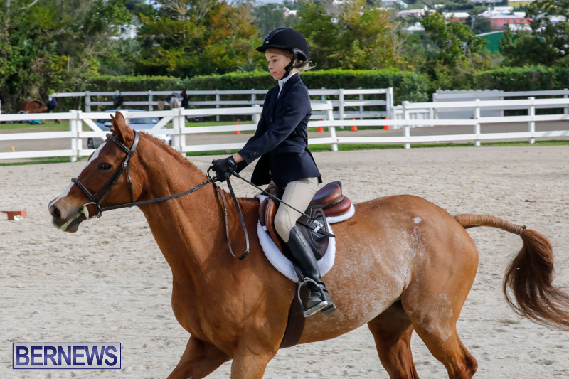 Auto-Solutions-RES-Spring-Show-Bermuda-January-20-2018-2781