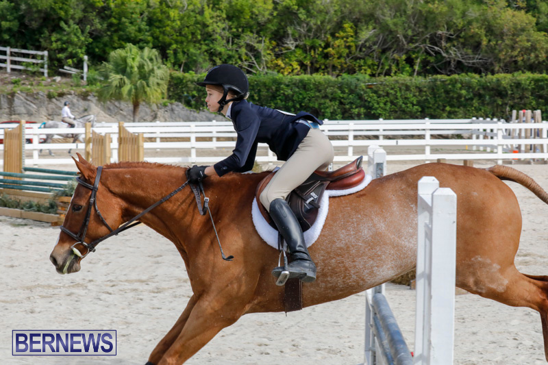 Auto-Solutions-RES-Spring-Show-Bermuda-January-20-2018-2783