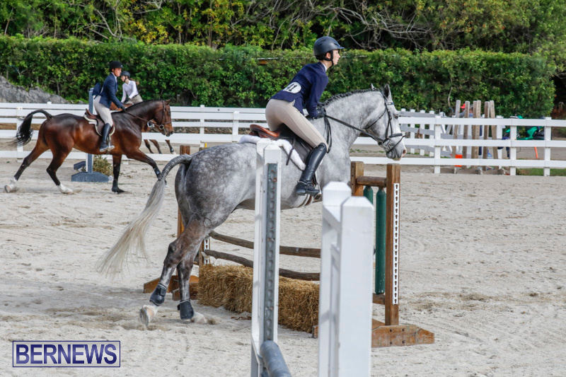 Auto-Solutions-RES-Spring-Show-Bermuda-January-20-2018-2806