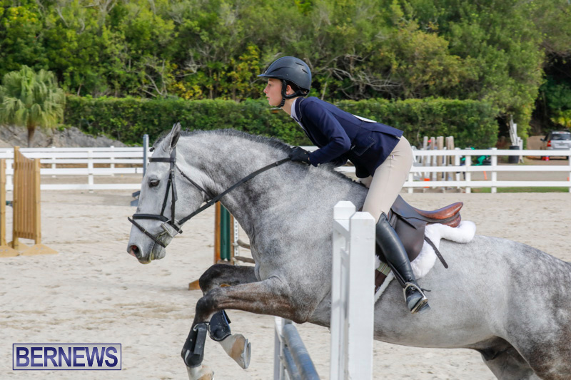 Auto-Solutions-RES-Spring-Show-Bermuda-January-20-2018-2815