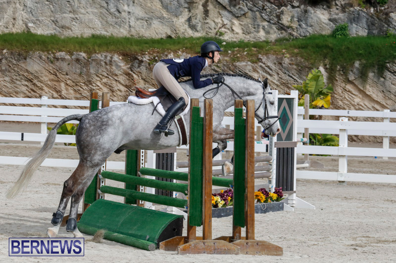 Auto-Solutions-RES-Spring-Show-Bermuda-January-20-2018-2818