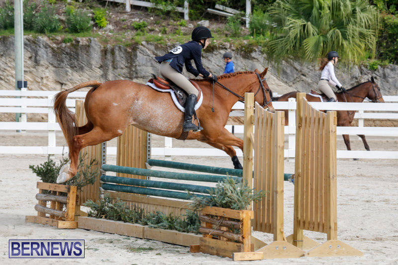 Auto-Solutions-RES-Spring-Show-Bermuda-January-20-2018-2838
