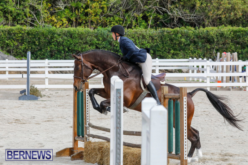 Auto-Solutions-RES-Spring-Show-Bermuda-January-20-2018-2841