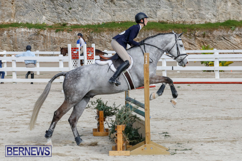 Auto-Solutions-RES-Spring-Show-Bermuda-January-20-2018-2873