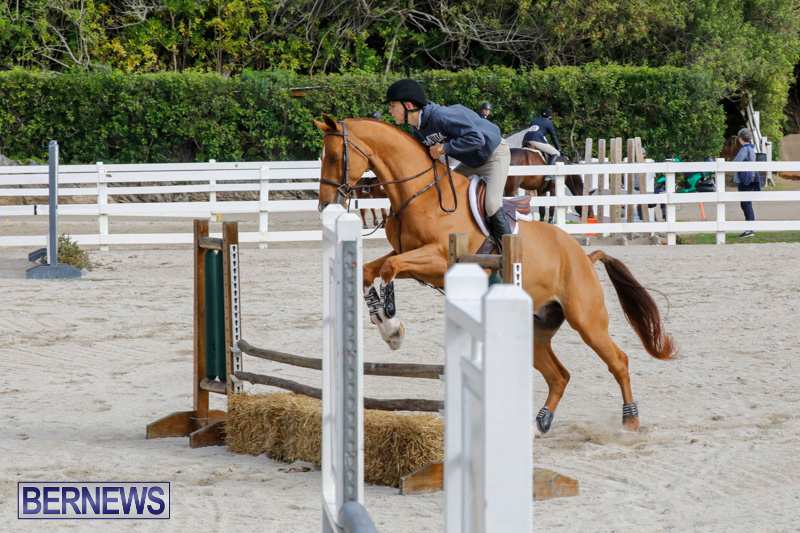 Auto-Solutions-RES-Spring-Show-Bermuda-January-20-2018-2912