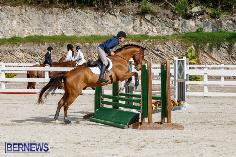 Auto-Solutions-RES-Spring-Show-Bermuda-January-20-2018-2918
