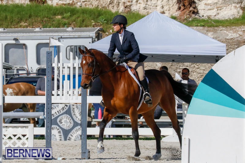 Auto-Solutions-RES-Spring-Show-Bermuda-January-21-2018-4751