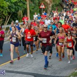 Bermuda Marathon Weekend 10K Race, January 13 2018-3856