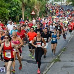 Bermuda Marathon Weekend 10K Race, January 13 2018-3860