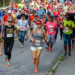Bermuda Marathon Weekend 10K Race, January 13 2018-3873